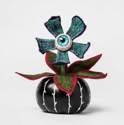 Creepy Succulent in Black Pumpkin