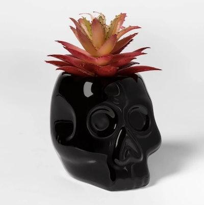 Skull Halloween Succulent Black