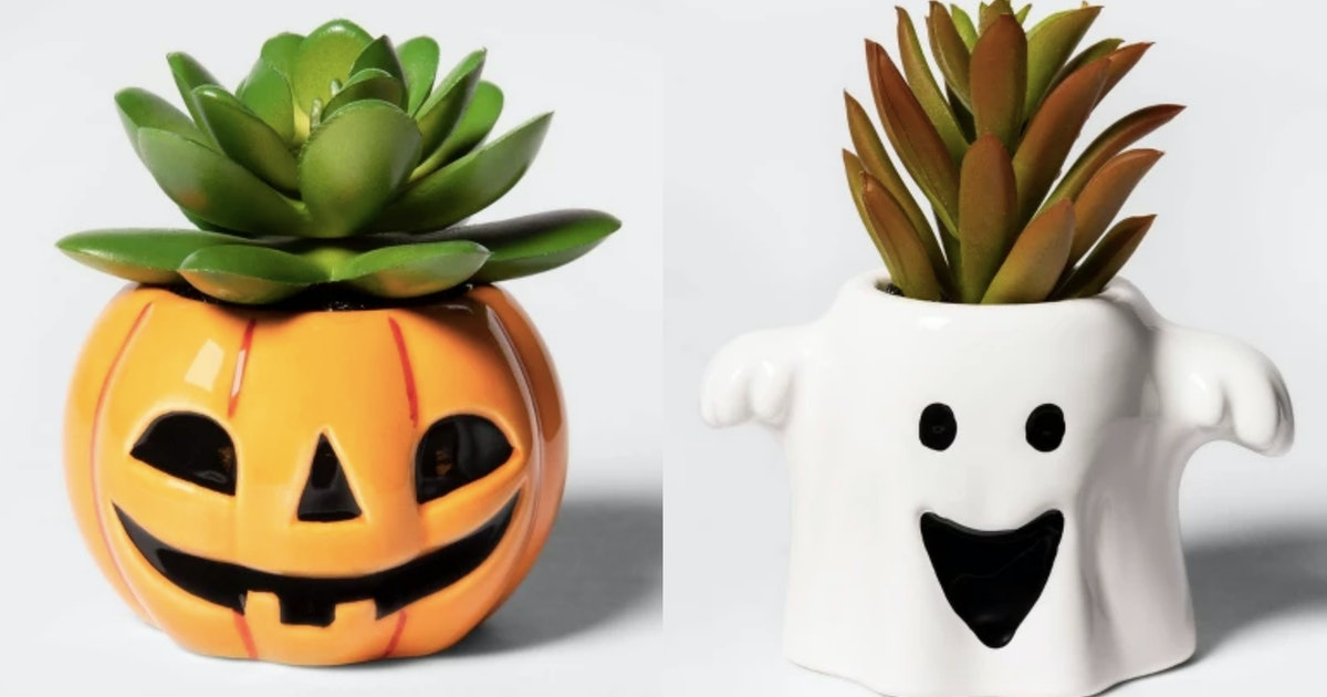 Target's Halloween Succulents Are So Spooky Cute You'll Want Them All