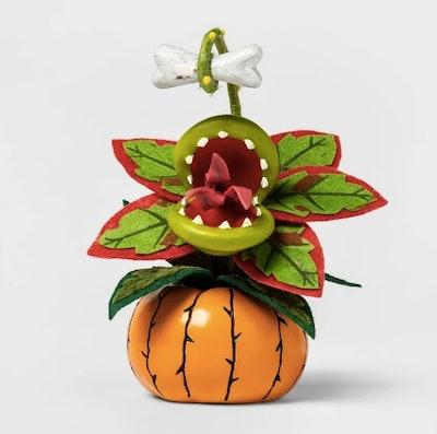 Creepy Succulent in Pumpkin Orange