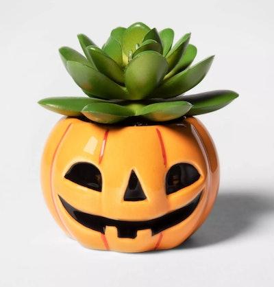 Pumpkin Halloween Succulent