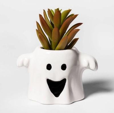 Ghost Halloween Succulent