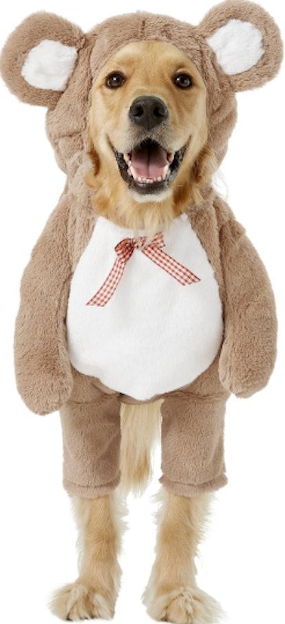Frisco Walking Teddy Bear Dog Costume