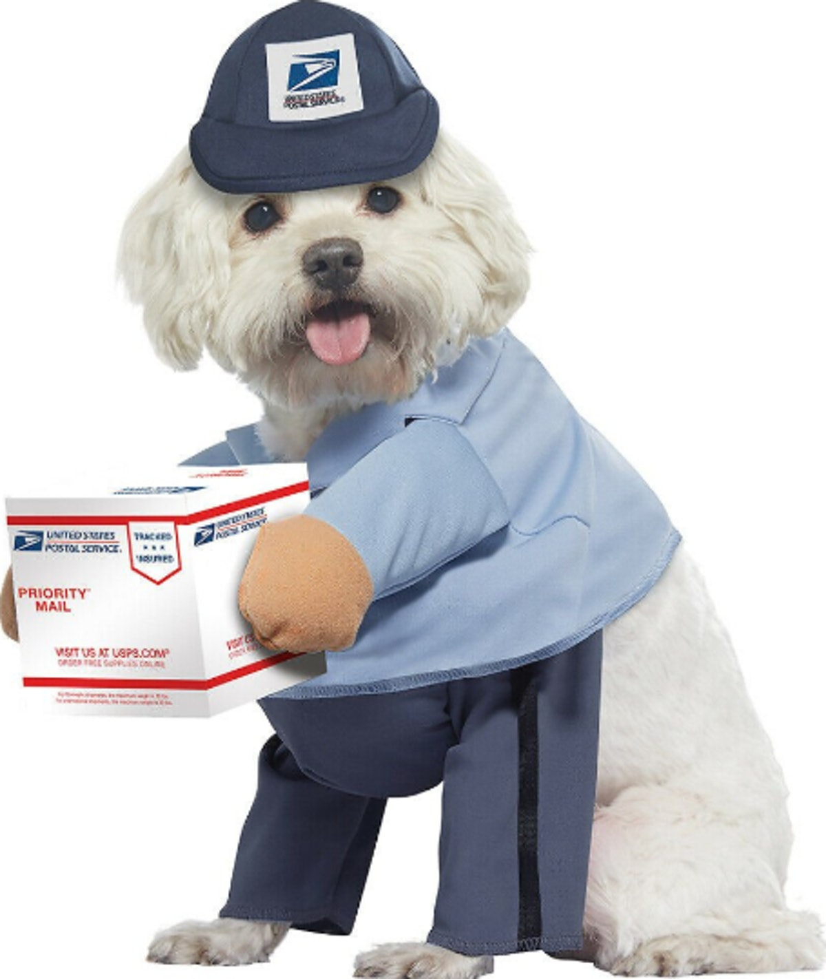 USPS Delivery Driver Dog Costume