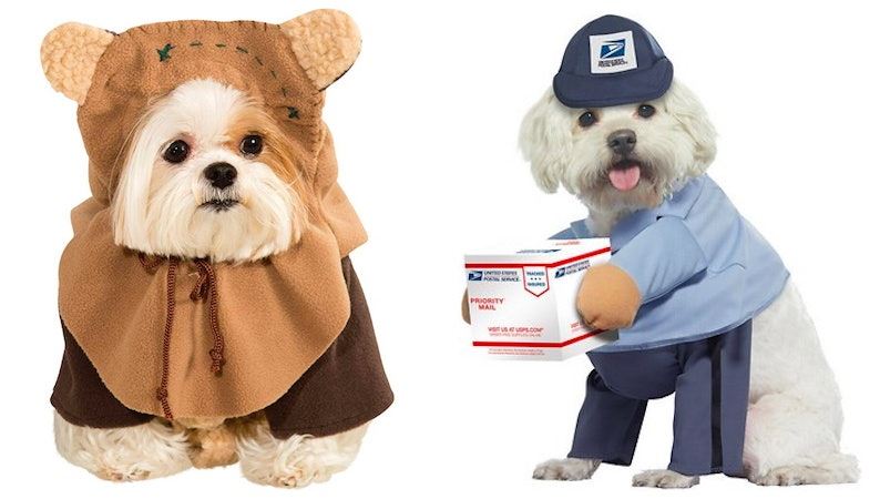 8 Cute Dog Costumes For Halloween 2019 That\u0027ll Make You Swoon