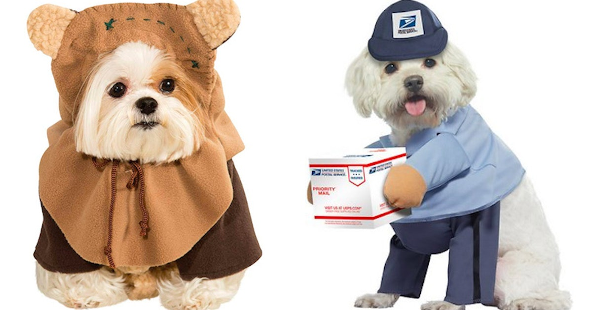 8 Cute Dog Costumes For Halloween 2019 That'll Make You Swoon
