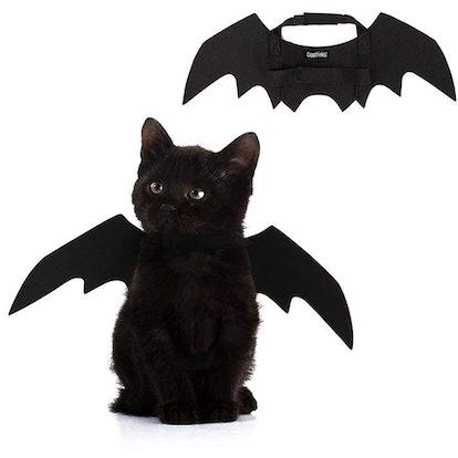 Pet Cat Bat Wings