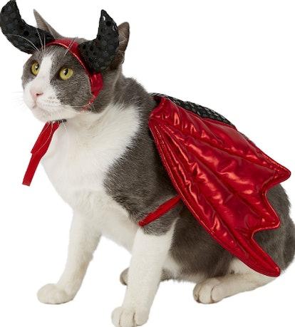 Frisco Devil Dog & Cat Costume