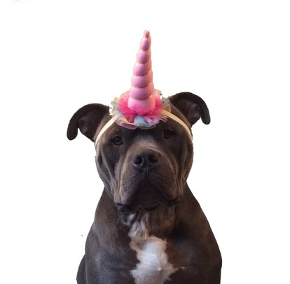 Pink Unicorn Horn Dog Headband Costume