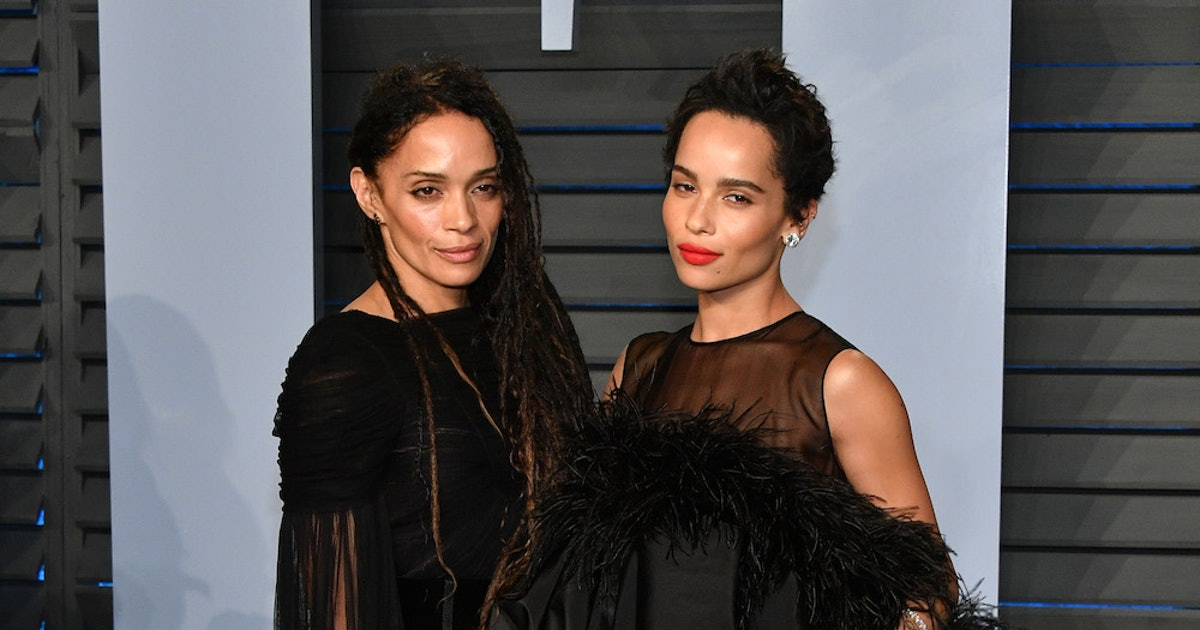 Beyoncé's Lisa Bonet Costume Has Zoë Kravitz Asking A Major Question