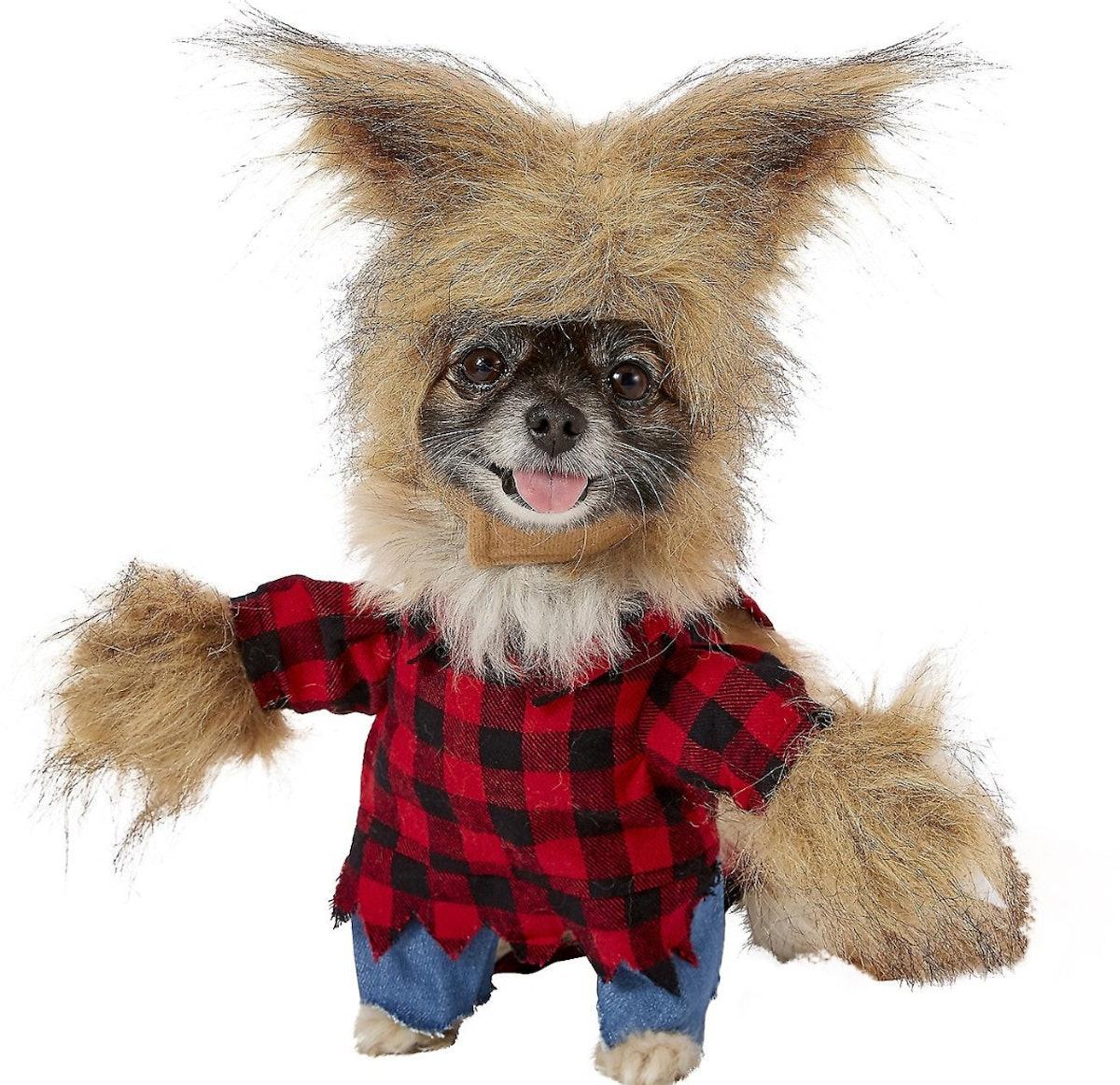 Frisco Werewolf Dog & Cat Costume