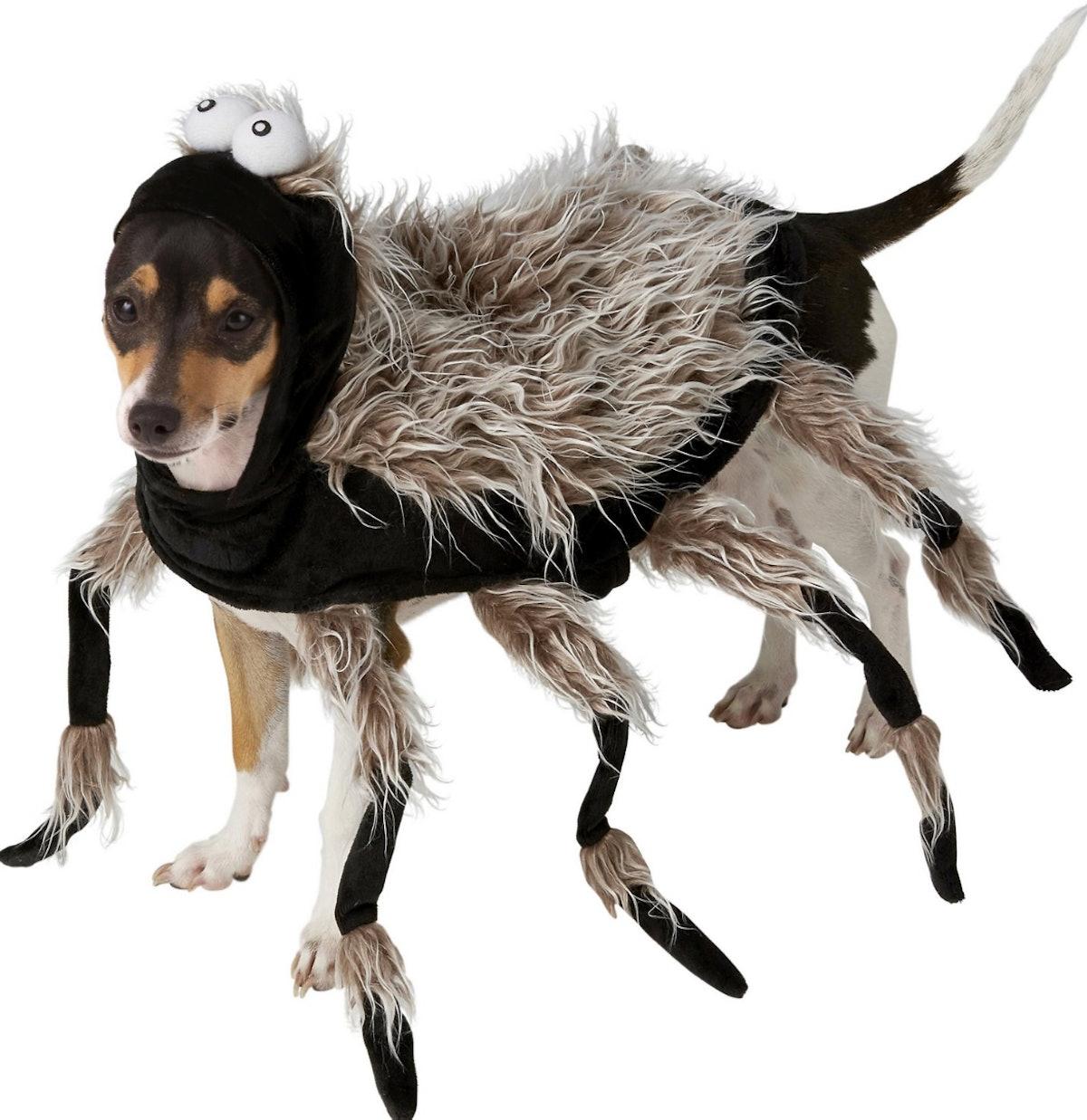 Frisco Tarantula Spider Dog & Cat Costume