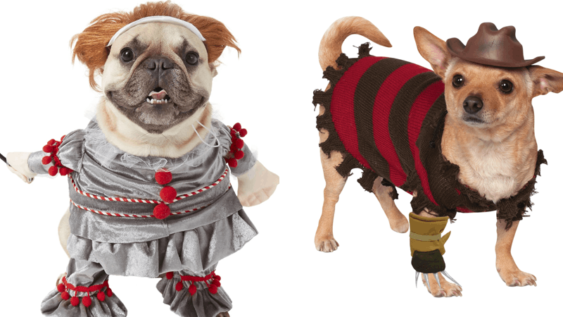 7 Scary Halloween Costumes For Dogs That Are Hilariously