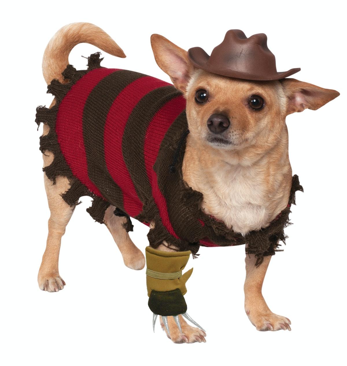 Freddy Krueger Dog & Cat Pet Costume