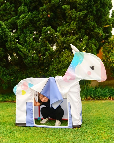 Unicorn Building Set