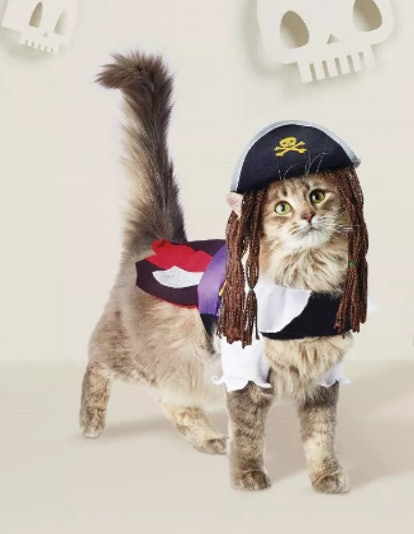 Pirate Dog & Cat Costume - Hyde & EEK! Boutique™