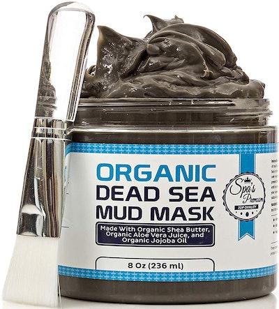 Spa's Organic Dead Sea Mud Mask