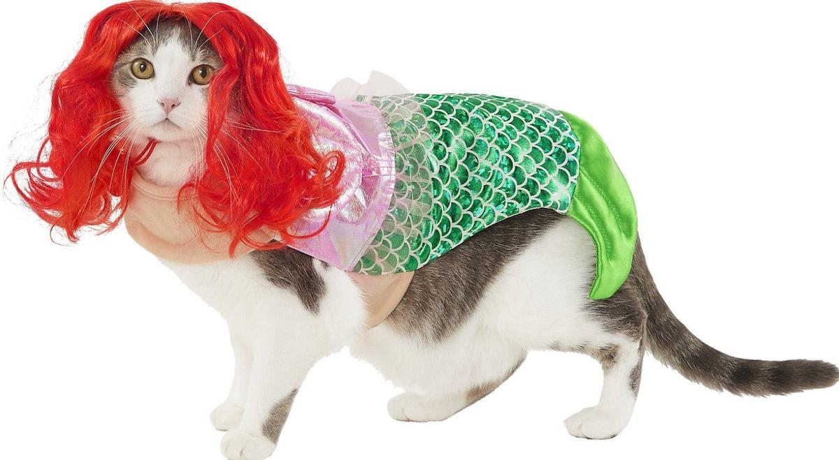 Frisco Mermaid Cat Costume