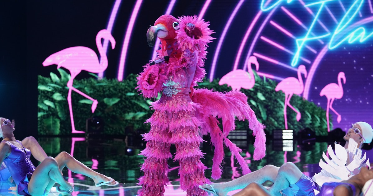 This 'Masked Singer' Flamingo Theory Points To A Cheetah Girl
