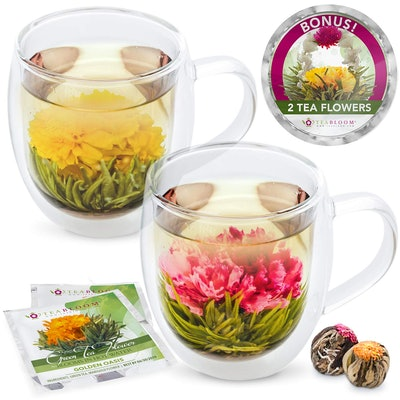 Teabloom Insulated Double Wall Glass Mugs (2-Pack)