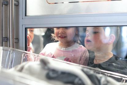 Brother and sister peer in window at newborn baby in nursery.
