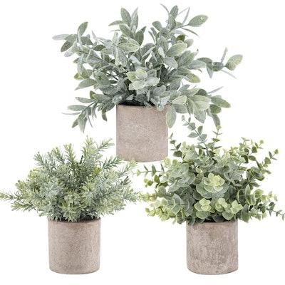 Der Rose Mini Potted Artificial Plants (3-Pack)