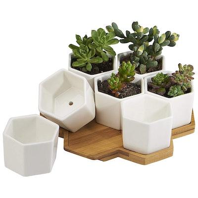Flowerplus Plantar Pots
