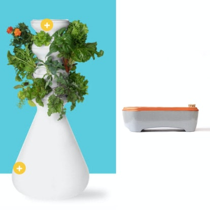 A self-fertilizing farmstand is one of the wellness items in the 2020 Grammys gift bag; a 12 pack of...