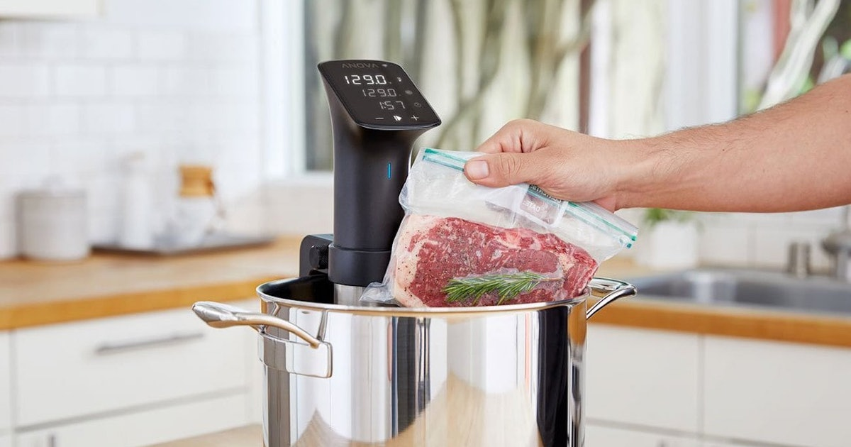 The 4 Best Budget Sous Vide Cookers