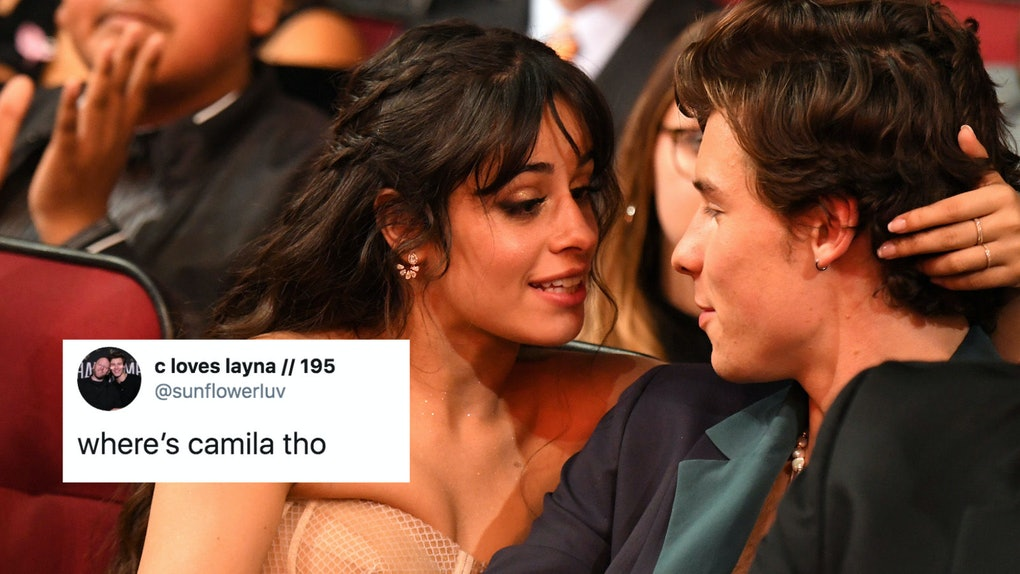 Tweets about Shawn Mendes and Camila Cabello at the Grammys ask the same question.