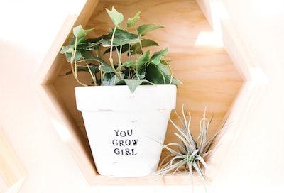You Grow Girl Pot