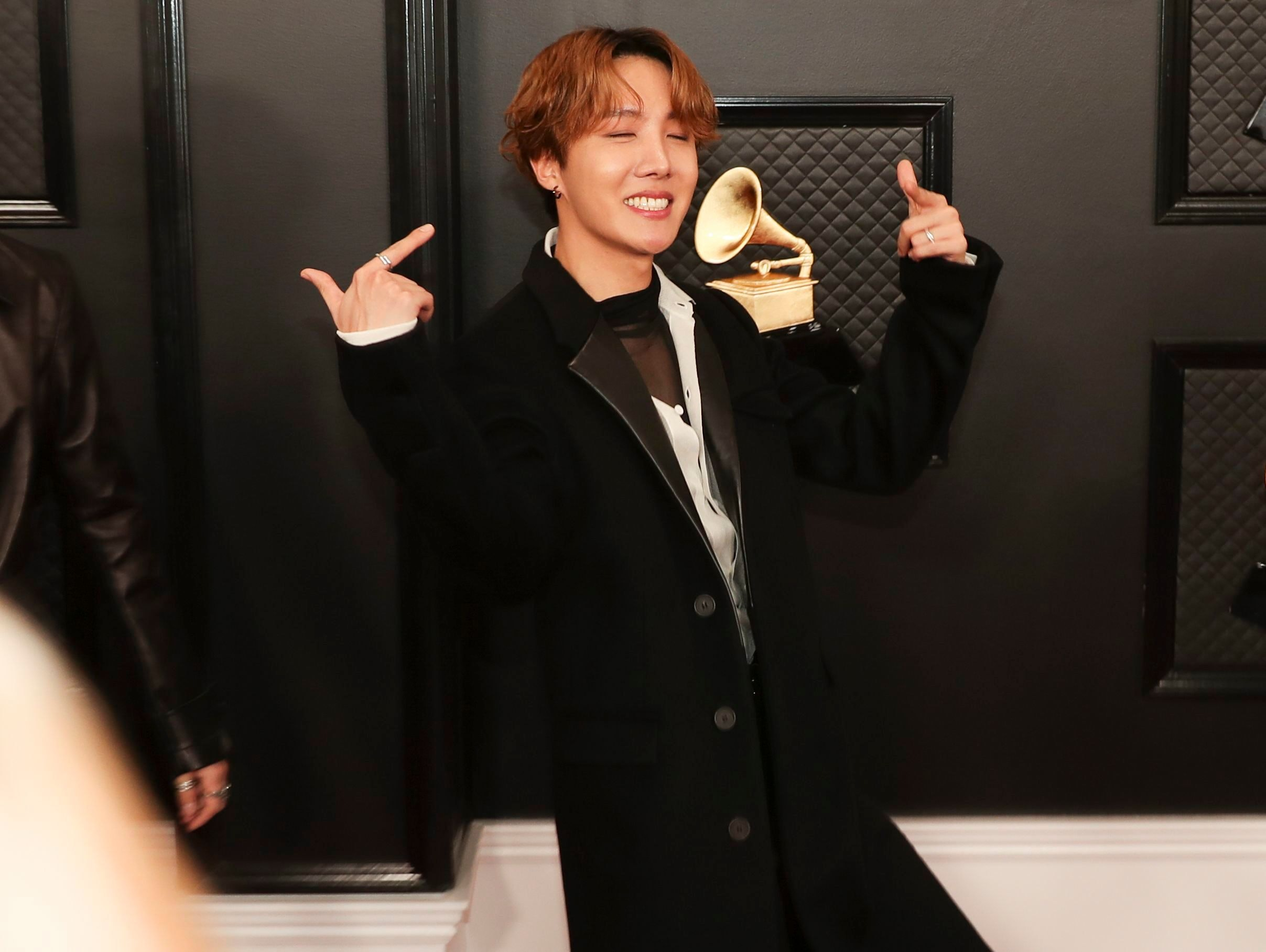 Download Bts Grammys 2020 Red Carpet