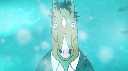 BoJack (voiced by Will Arnett) in BoJack Horseman