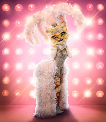 The Kitty in The Masked Singer Season 3.
