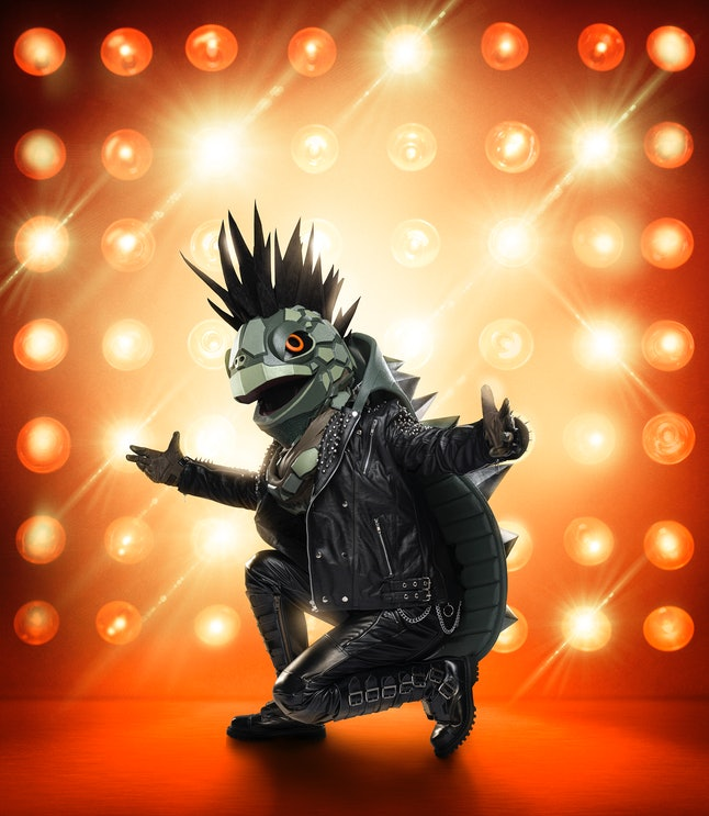 The Turtle in The Masked Singer Season 3.