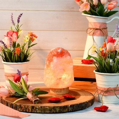 LEVOIT Kana Salt Lamp with 2 Extra Bulbs