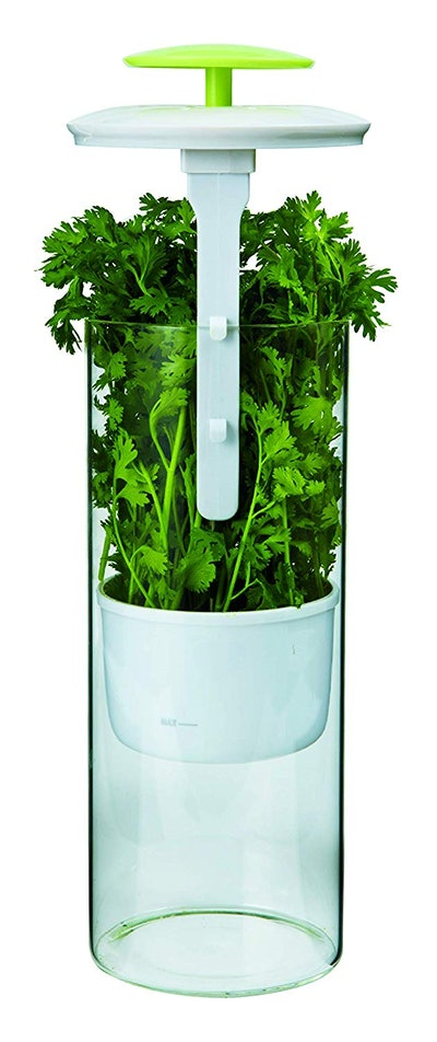 Premium Herb Keeper and Herb Storage Container