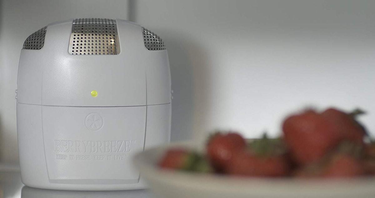 Berry Breeze Refrigerator Deodorizer