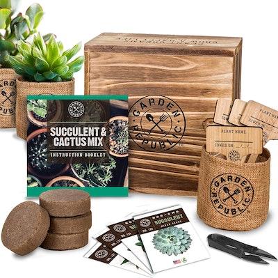 GARDEN REPUBLIC Cactus Succulent Seed Starter Kit