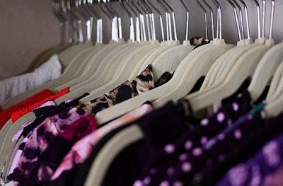 TechZoo Velvet Hangers (Set Of 50)