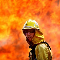 Wildland firefighters are burning out