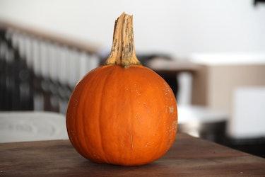 sugar pumpkin