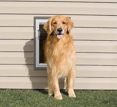 PetSafe Wall Entry Plastic Pet Door, Large