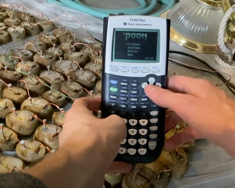 The game Doom running on a TI-84 calculator can be powered using energy from potatoes.