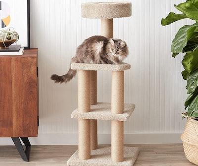 AmazonBasics Cat Activity Tree