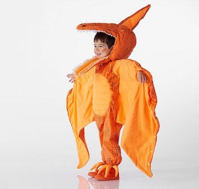 Toddler Light Up Pterodactyl Halloween Costume