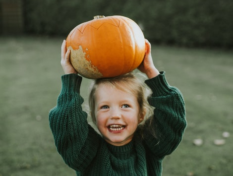 little girl holding a pumpkin on her head. Experts say pumpkin picking is best the first two weeks o...