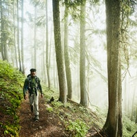 Four ways nature can boost your physical health