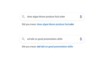 Misspelled search queries being corrected by Google.