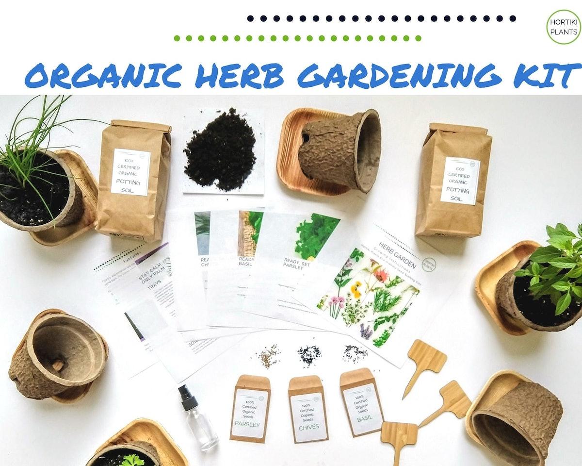 Organic Kitchen Herb Gardening Kit